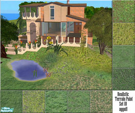 Sims 2 — Realistic Terrain Paint Set 10 by ayyuff — 9 new realistic ground covers.