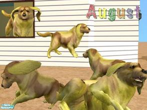 Sims 2 — Mutt of the Month: August by Small Town Sim — Meet Auggie the August Mutt. A unique breed of