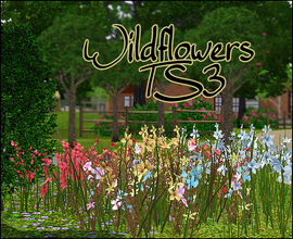 Sims 3 —  Wildflowers by sim_man123 — Conversion of one of my TS2 sets over to TS3 - Wildflowers. Smaller this time, it