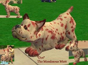 Sims 2 — Dot the Measleous Mutt by Small Town Sim — Dot has a continuing case of measles AND is permanently swollen as a