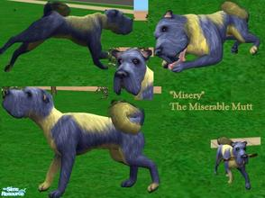 Sims 2 — Misery by Small Town Sim — Misery the Miserable Mutt. You'd think he would be happy being such a pretty pup- but