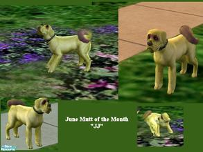 Sims 2 — Mutts of the Month: June by Small Town Sim — JJ is the Mutt for June. What a sweetie. With a bright coat of