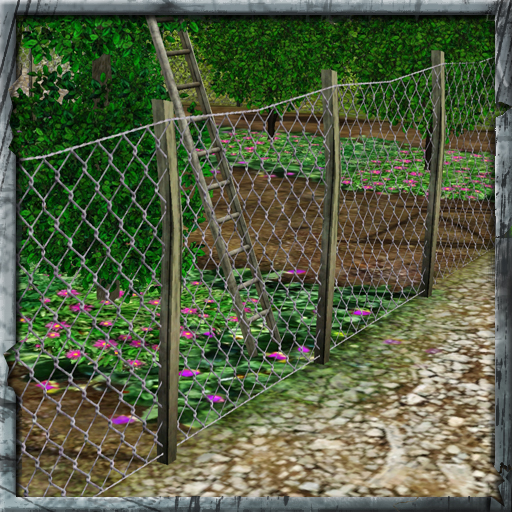 Cyclonesue\'s Rickety Chickenwire fence