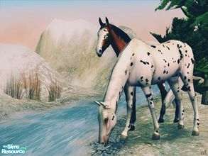 Sims 2 — Seeing Spots - Basic Horse Recolors by xtinabobina — Hey simmers! It\'s been a while, so I\'ve come back with a