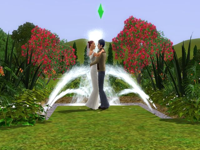 Jadepanther198303's Wedding Arch Invisible