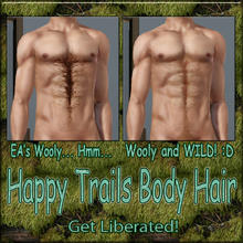 Sims 3 — Happy Trails Body Hair - Wooly by terriecason —