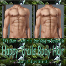 Sims 3 — Happy Trails Body Hair - Short by terriecason —