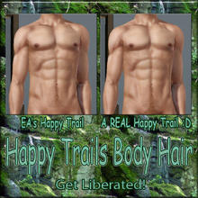 Sims 3 — Happy Trails Body Hair - Happy Trail by terriecason —
