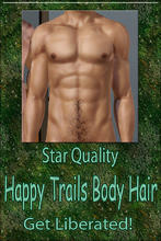 Sims 3 — Star Quality Happy Trails Body Hair by terriecason —
