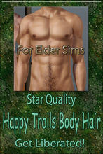 Sims 3 — Star Quality Happy Trails Body Hair-Elder by terriecason —