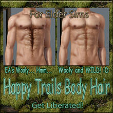 Sims 3 — Happy Trail  Body Hair-Wooly-Elder Males by terriecason —