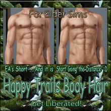 Sims 3 — Happy Trails Body Hair - Short- Elder Males by terriecason —