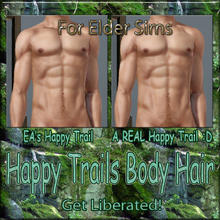 Sims 3 — Happy Trail Body Hair - HappyTrail-Elder Males by terriecason —