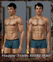 Sims 3 — Happy Trails Body Hair - Forearms by terriecason —