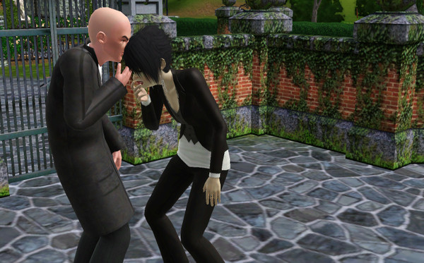 how to stop objects fading away in the sims 4