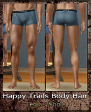 Sims 3 — Happy Trails Body Hair - Legs-Whole by terriecason —