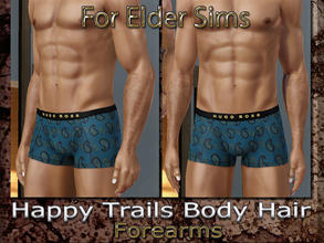 Sims 3 — Happy Trails Body Hair - Forearms-Elder by terriecason —