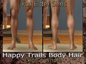 Sims 3 — Happy Trails Body Hair - Legs-Whole-Elder by terriecason —