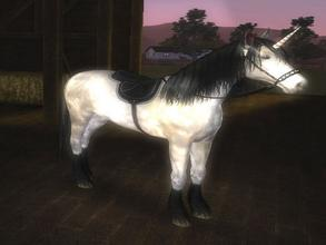 Sims 3 — Enigma - Unicorn by Mayet514 by mayet514 — Enigma is my foal from Black Unicorn parents. She was born black
