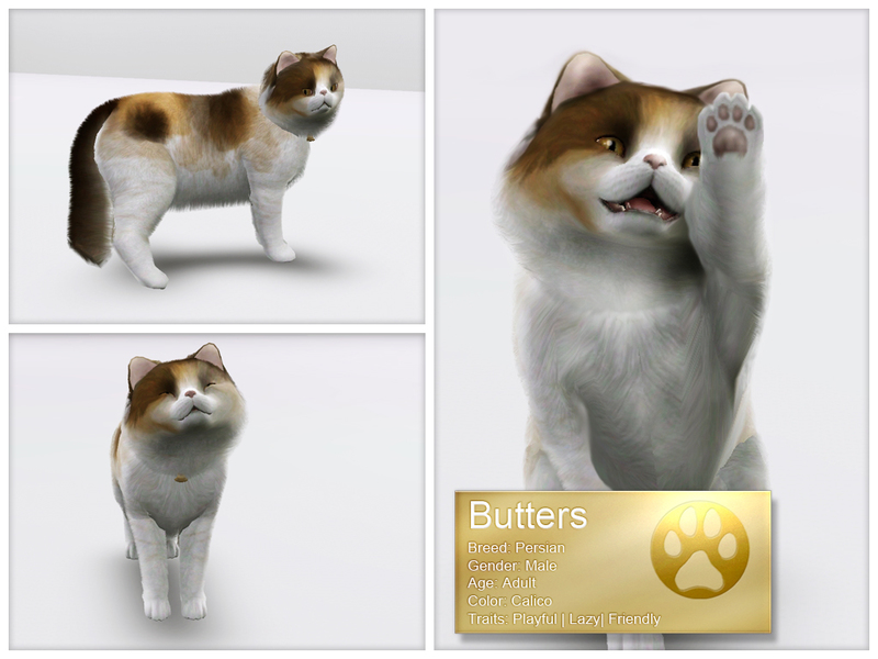 Sims 3 persian cat