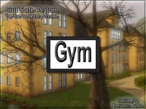 Sims 3 — Gym Sign by Cerulean Talon — A weight room is essential for keeping the staff and inmates in shape. White with