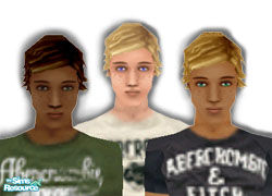 Sims 1 — David by siyang2 — A new head for Sims! All skin tones.