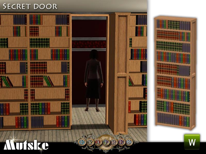 21st Century Bookshelf Door