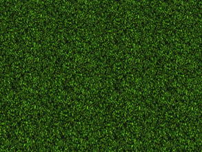 Sims 2 — The Lawn Set - 1 by zaligelover2 — Grassy ground covering.