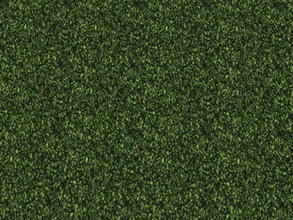 Sims 2 — The Lawn Set - 4 by zaligelover2 — Grassy ground covering.