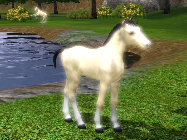 sims 3 how to get a foal