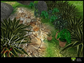 Sims 3 — Plants Set by Jindann — Plants set is a beautiful tropical plants, has two types: decor and shrubs type. In this