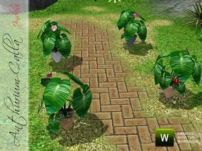 Sims 3 — Anthurium Calla by Jindann — Anthurium Calla is beautiful and great plant for your garden or your interior.