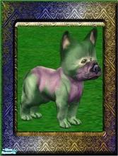 Sims 2 — Animals of Mysterious Island - Zurple by Small Town Sim — From the Bigous-Headous Breed. Characteristic of this