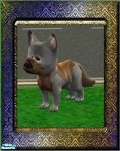Sims 2 — Animals of Mysterious Island - Maple by Small Town Sim — From the Bigous-Headous Breed. Characteristic of this