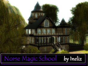 Sims 3 — Norse Magic School by Ineliz — When your sims have a supernatural gift, they need a special place where they can