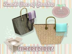 Sims 3 — Beach Essentials - Bag *Decor* by SIMcredible! — It's SIMcredible! Small box of goodies #1 - Your lovely source