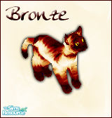 Sims 1 — Bronze Cat by BloodMaple —