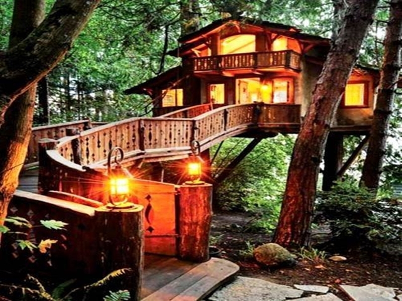 Katherine1091 S Cozy Tree House By Sarah1091