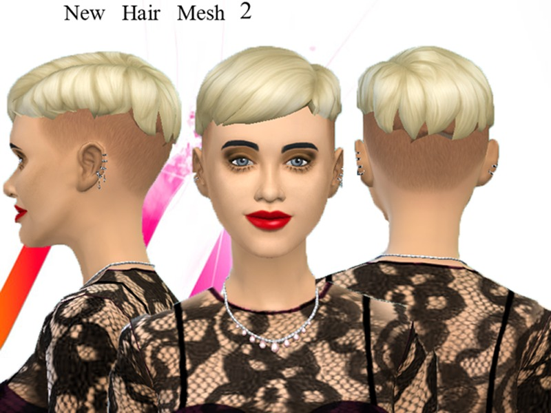 Neissys New Mesh Punk Hair 2
