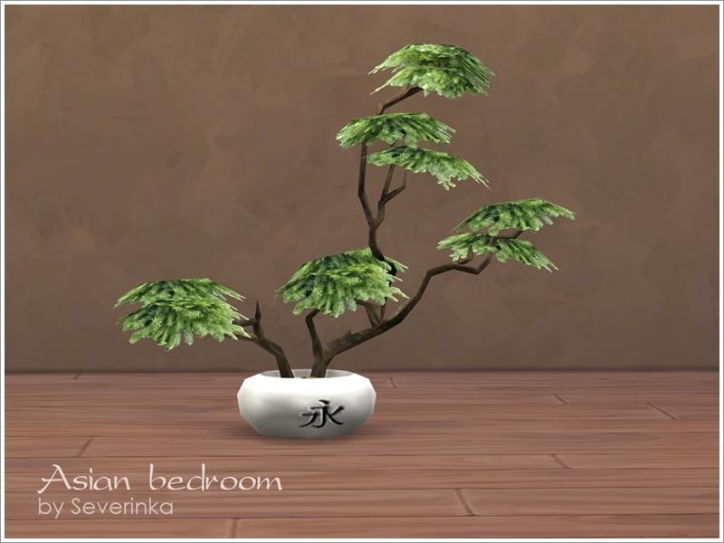 Severinka S Bonsai Tree