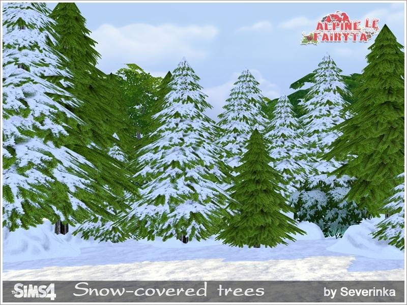severinka s snow covered trees