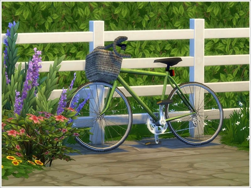 Severinka S Set Of Bicycles