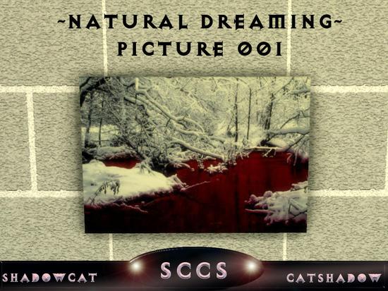 Естественно мечтать