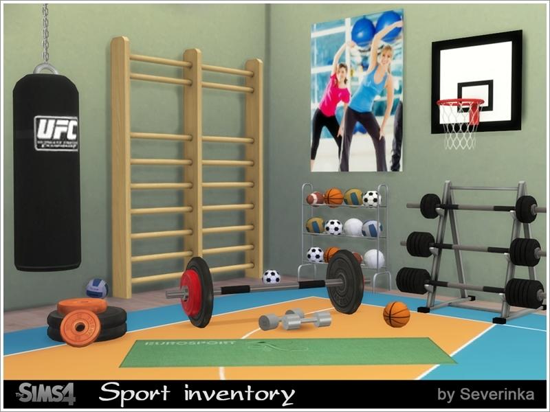severinka 39 s sport inventory set. Black Bedroom Furniture Sets. Home Design Ideas