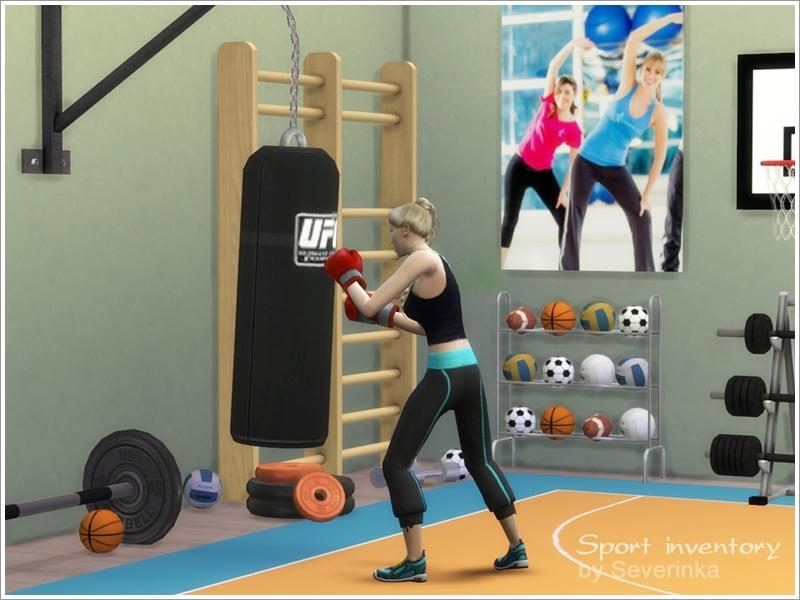 Severinka 39 s sport inventory set for Posters para gimnasios