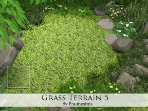Sims 4 — Grass Terrain 5 by Pralinesims — By Pralinesims