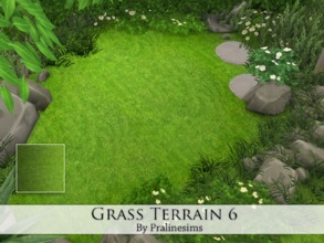 Sims 4 — Grass Terrain 6 by Pralinesims — By Pralinesims