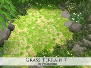 Sims 4 — Grass Terrain 7 by Pralinesims — By Pralinesims