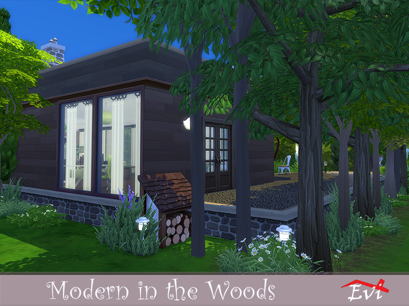Evis Modern In The Woods