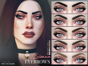 Eyebrow Color